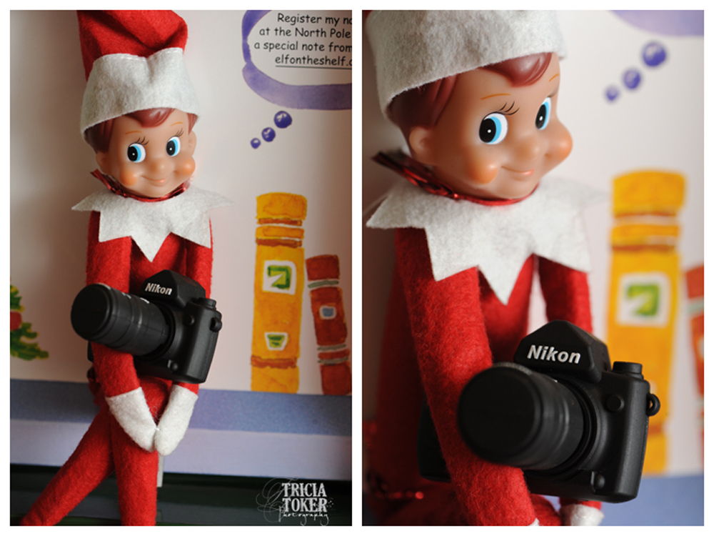 Tricia Toker Photography Twelve 12 by Tricia Toker Elf on the Shelf Nikon DSLR USB 2012 sxs a High School Senior Portraits Lawrenceville Georgia Gwinnett County1 Personal Obsessions   Elf on the Shelf