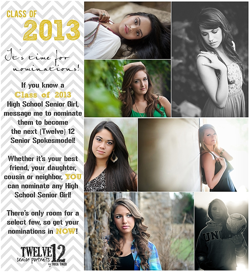 Twelve12 Senior Portraits by Tricia Toker Photography High School Senior Portraits Senior Portrait Photographer Atlanta Georgia Gwinnett County Lawrenceville Georgia Johns Creek Georgia Alpharetta Georgia Grayson Georgia Blog 001 Its Nominations Time ~ Senior Spokesmodels ~ {High School Senior Portrait Photographer}